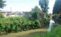 Река Адзапш впервые за много лет не вышла из берегов во время сильных дождей